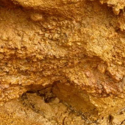 GUINEA PLACER GOLD MINE