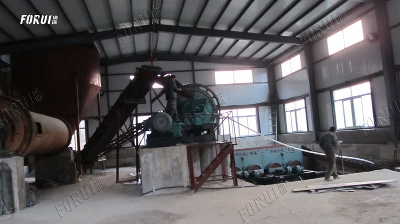 200 TPD Pyrite Beneficiation Plant